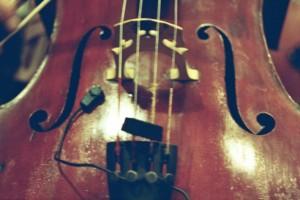 We - cello